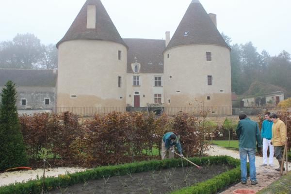 Plantation de rosiers au Château de Corbelin