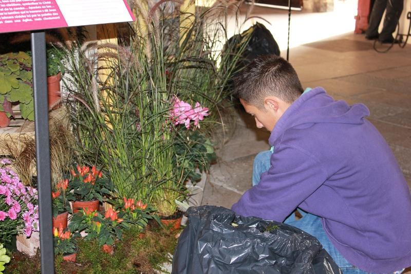 Les élèves de 1° et Terminale AP aménagent un décor floral dans la cathédrale de Nevers