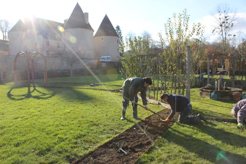 Plantation des rosiers au Château de Corbelin