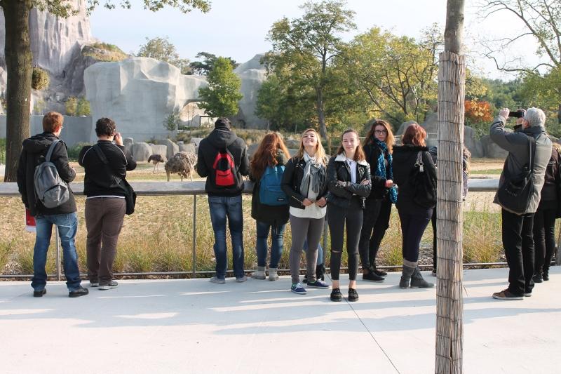Visite du Parc zoologique de Vincennes