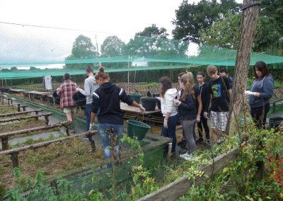 2016-09-08-3a-heliciculture-15