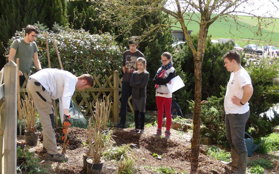 Apprendre aux enfants le métier de jardinier